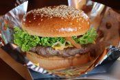 ハンバーガー発祥の地はどこ?【ハンバーガーの起源や歴史をわかりやすく解説】