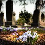 明智光秀のお墓について。