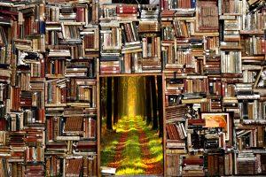 大量の本と、成功への道