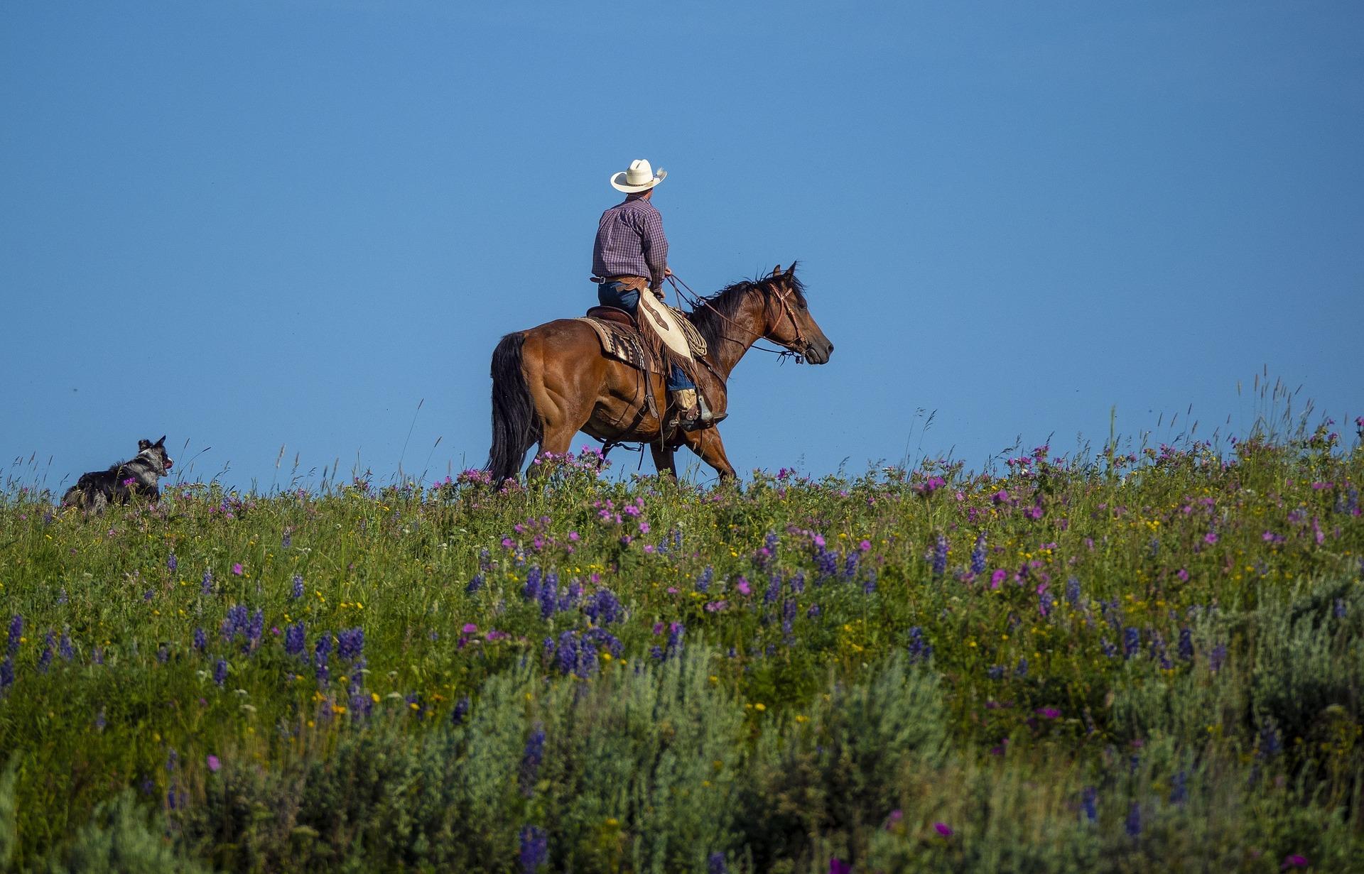馬にのった男