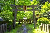 比叡山「延暦寺」とは?【歴史や見どころをわかりやすく解説】