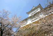 津山城ってどんな城?城主は誰?【津山城の歴史や、観光での見どころをわかりやすく解説】