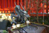 神奈川県「箱根湯本温泉」とは?【箱根湯本温泉の歴史や周辺の観光スポットも紹介】