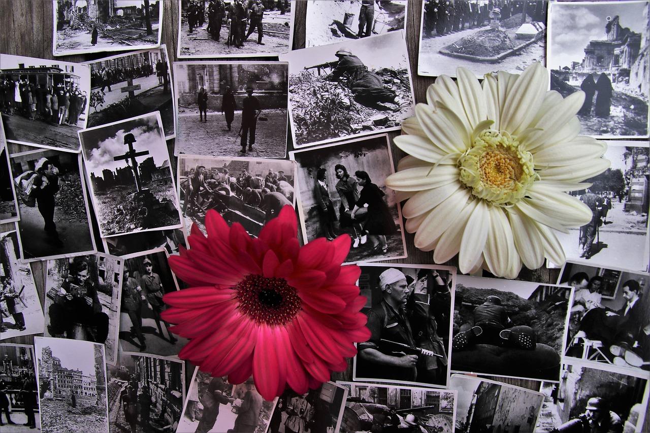 たくさんの写真と花