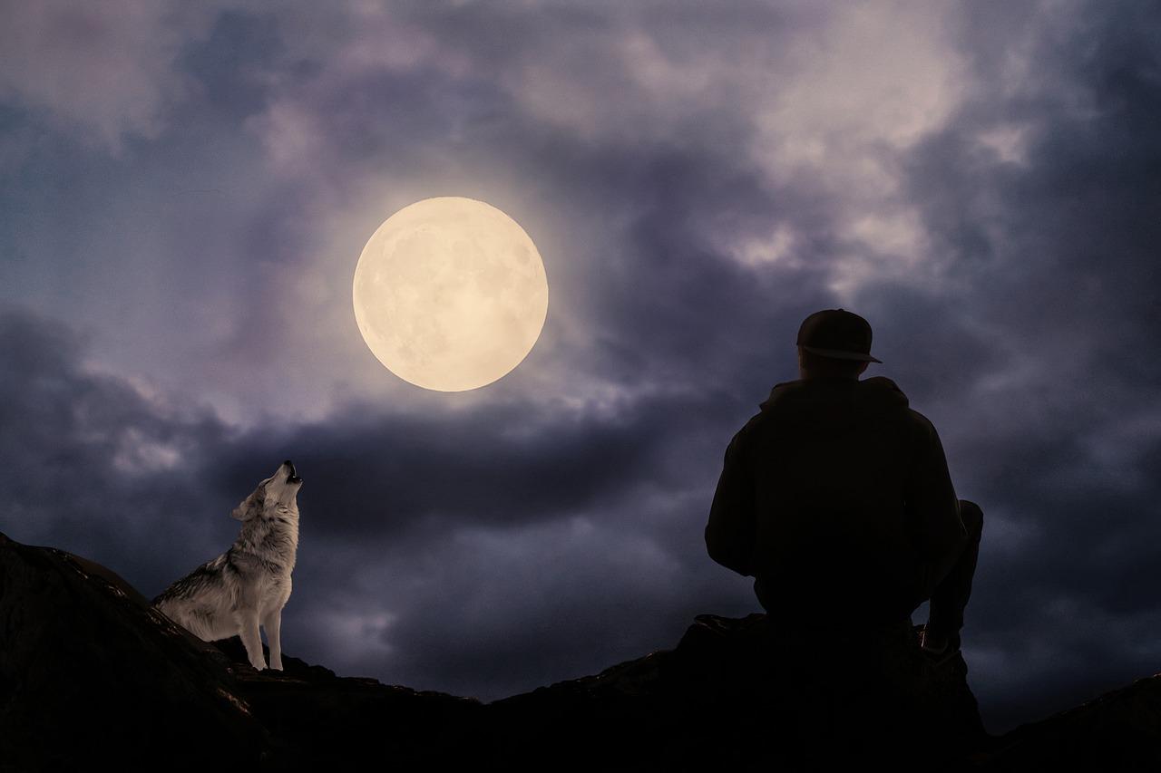 おおかみと月と男