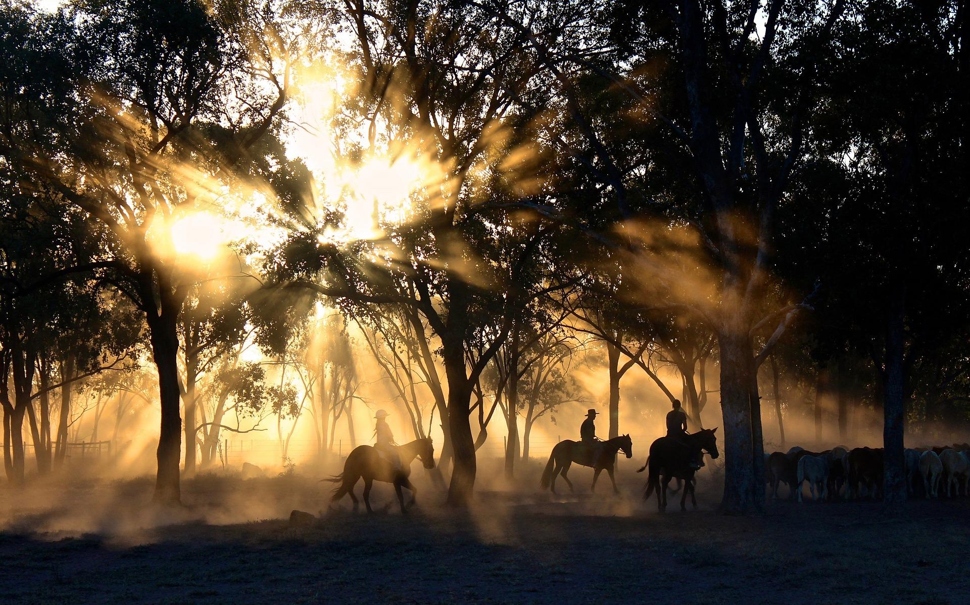 馬と自然と人