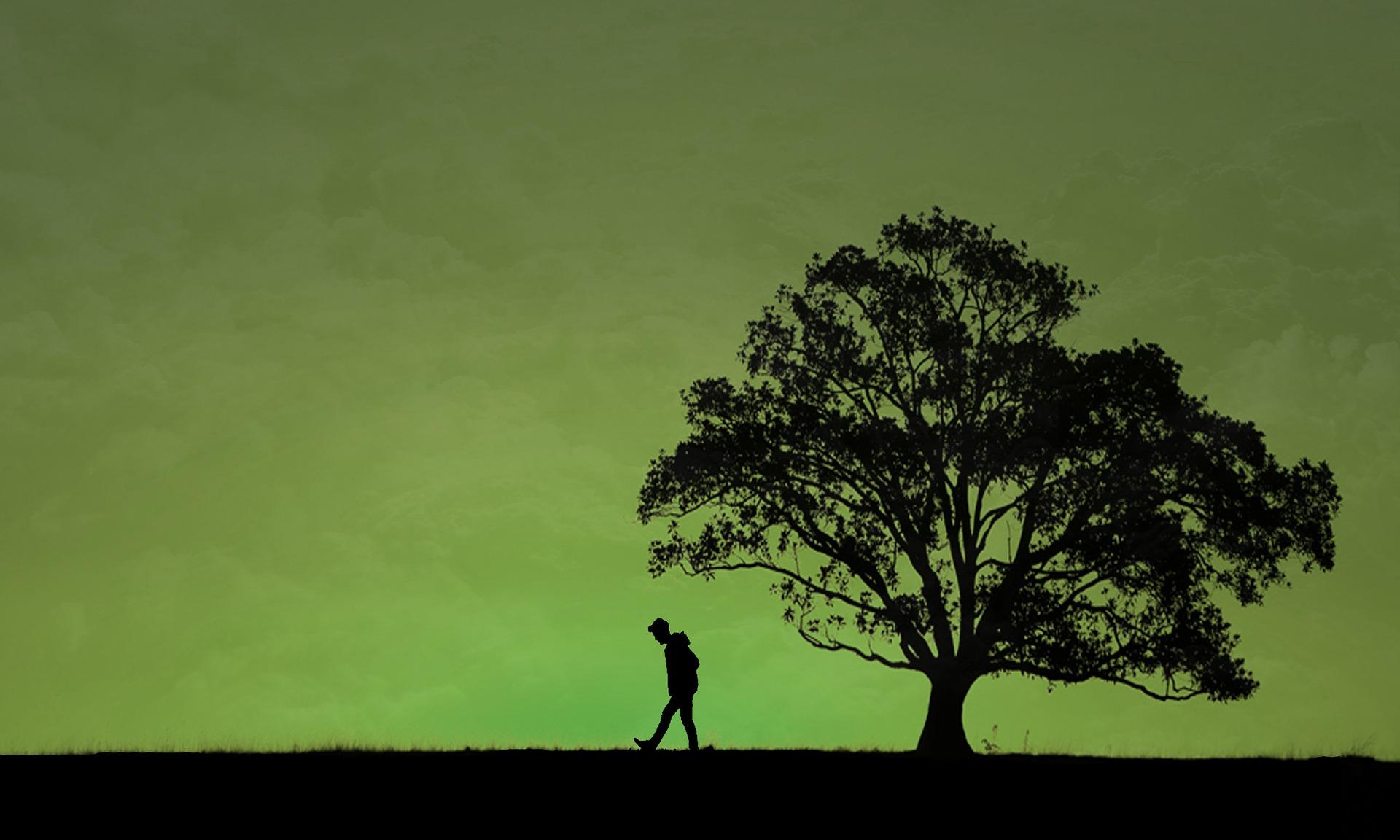 男性と木とオーロラ