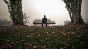 ベンチにすわる男性の後ろ姿