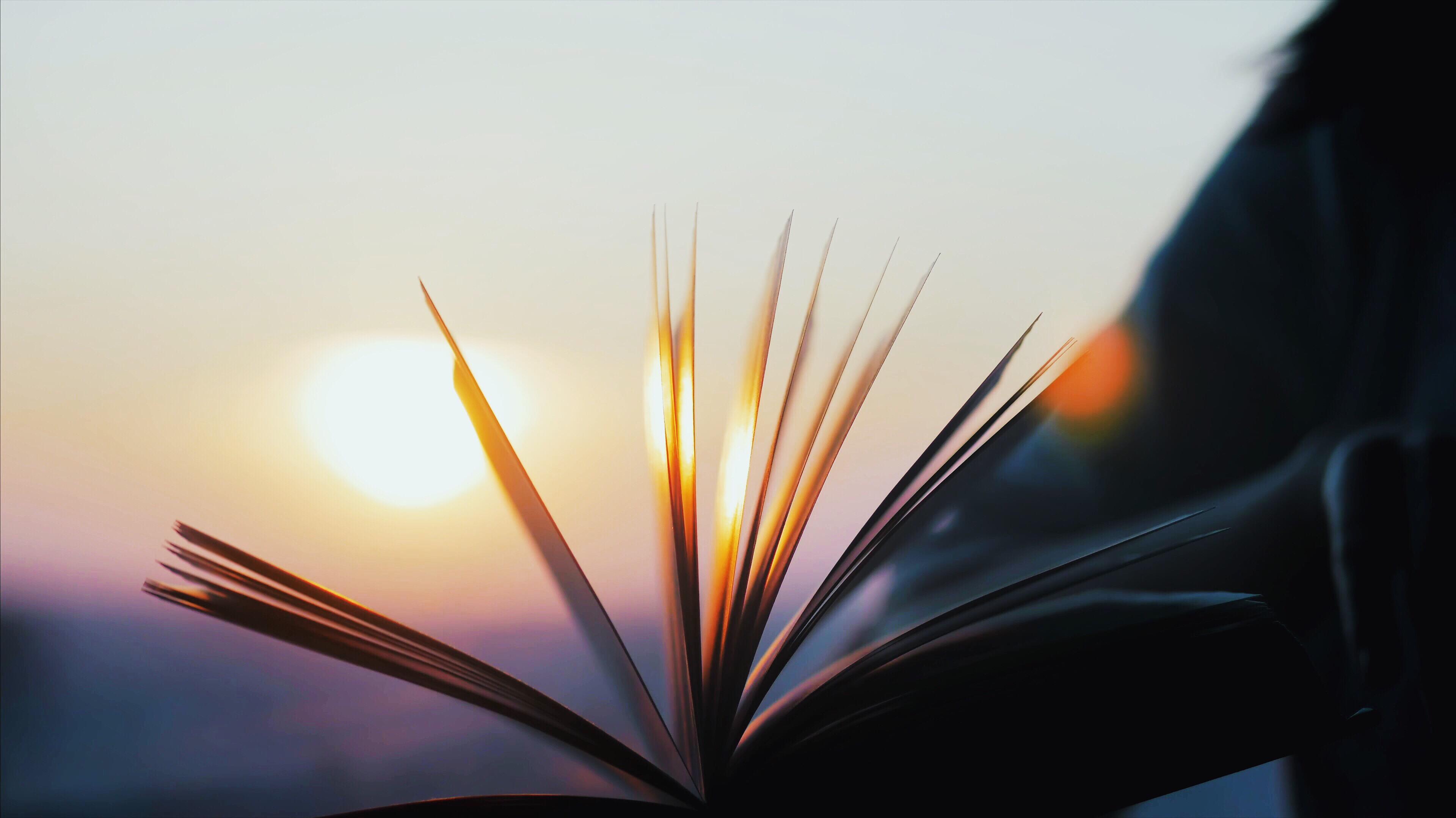 本と日の丸