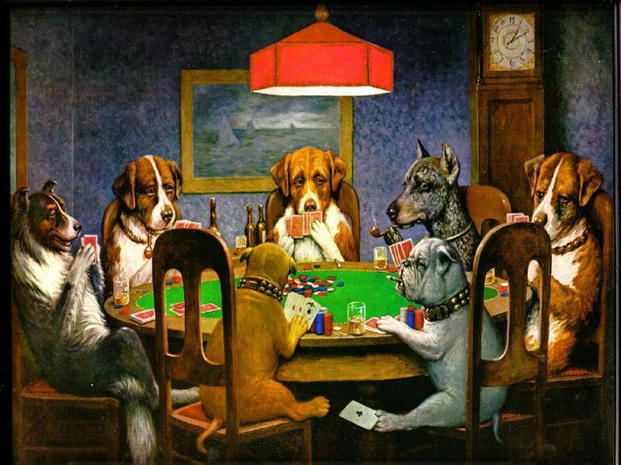 犬たちの会議
