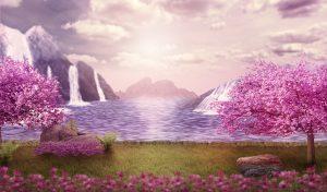 美しき桜の景色