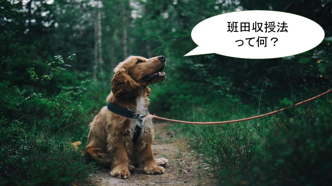 班田収授法とは何か