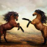 「馬が合う」の語源や由来は何?